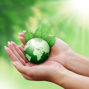 go green by making small changes to your home and daily habits